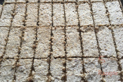 Zubereitung des Rezepts Fantastischer Kuchen mit Nussbaiser, schritt 10